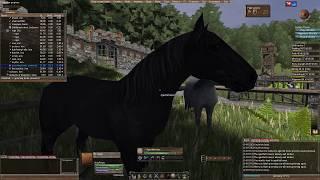 Путешествие за бизонами - Wurm Online #27