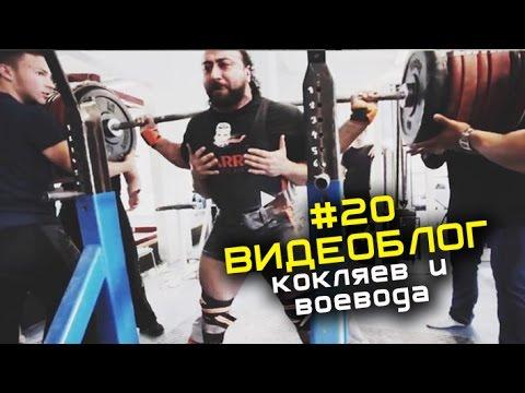 Кокляев, Лилибридж и Воевода #20 ВИДЕОБЛОГ