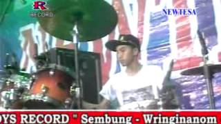 Video Kelangan Devi Aldiva  New Tesa Live Pedagangan wringinanom   gresik 2015 download MP3, 3GP, MP4, WEBM, AVI, FLV Maret 2017