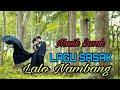 Lalo Nambang | Lagu Sasak 2020 Mantul, Musik Sasak