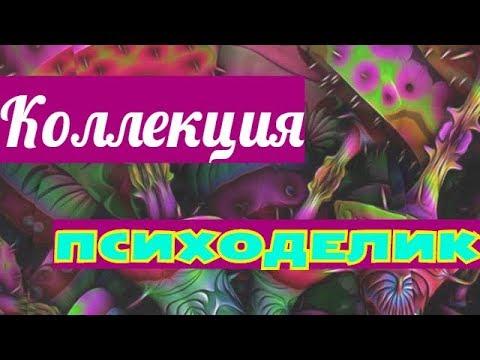 Смотреть клип Коллекция принтов Психоделика онлайн бесплатно в качестве