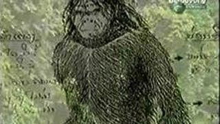 U.S. Soldiers Have Encounter with Entire Tribe of Rock Apes - (Vietnam Bigfoot)