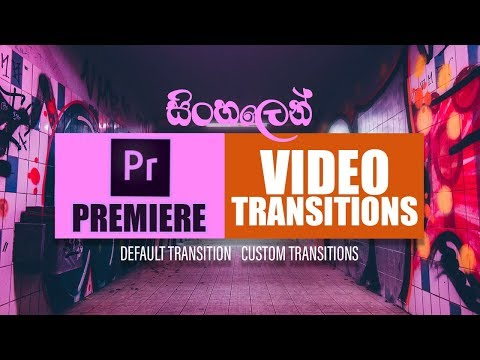 How To Add Video Transitions In Adobe Premiere Pro | EP05