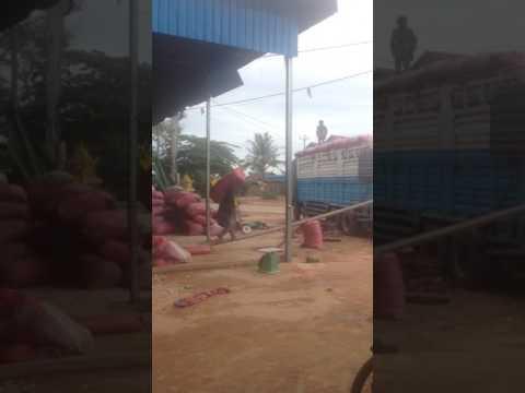 Khmer xnxx