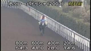 [調教] 090204 ホッコーパドゥシャ 「小倉大賞典」前追い切り