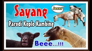 Single Terbaru -  Ngakak Kambing Nyanyi Sayang Via Vallen