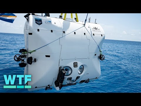 Record-breaking Mariana Trench dive | What the Future