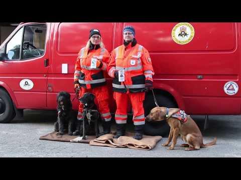 Vereinsheim-Offensive: BRH Rettungshundestaffel
