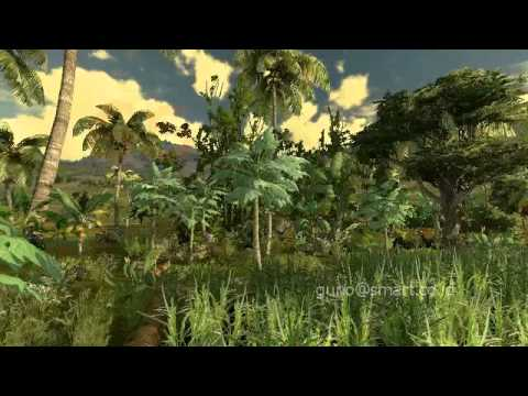 3d animation of Indonesia garden