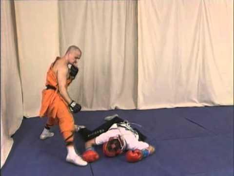 Shaolin kung fu combat