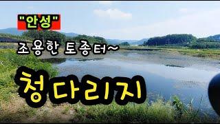 [안성]_ 청다리지 / 조용한 토종터 소류지 / 경기도 안성시 서운면 신흥리 209-2