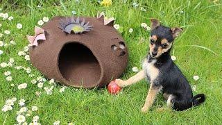 Filzanleitung: gefilzte Hundehütte / Katzenhöhle felting