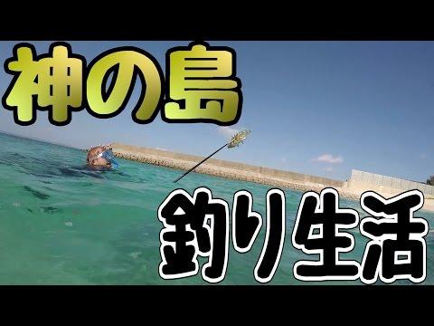 釣り生活 久高島編 【神の島】