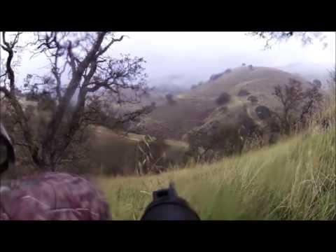 Coyote Hunting Upper Cottonwood Creek Wildlife Area (Unsuccessful Hunt)