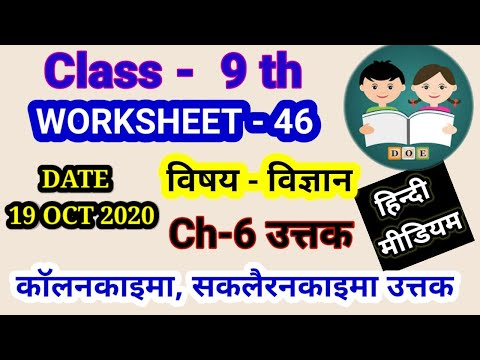 WORKSHEET  46 CLASS 9 SCIENCE HINDI MEDIUM (MONDAY):  : 19 october 2020 : DOE WORKSHEET