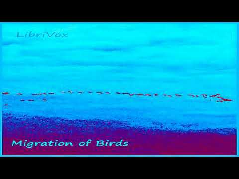 Migration of Birds | U.S. Fish and Wildlife Service | *Non-fiction, Animals | Speaking Book | 2/3