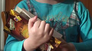 Обзор книг.Часть 1.Дневник Диппера и Мэйбл.Тайны,приколы и веселье.
