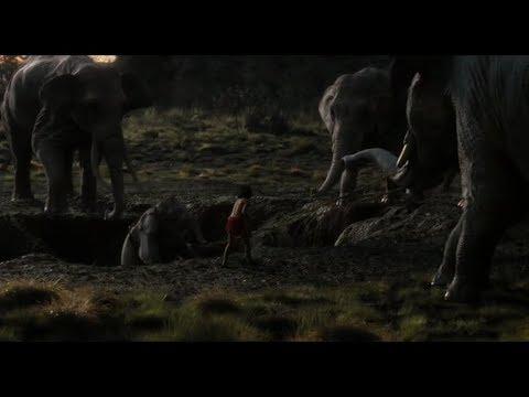 Mowgli salva l'elefantino-Il Libro della Giungla(2016).
