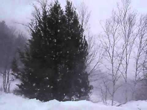 blizzard in new hampshire   [12:40 pm] Live