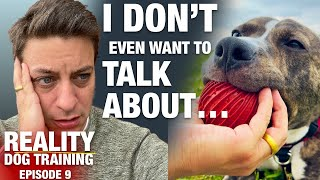 Do you know how many people are going to troll me over this? [Reality Dog Training EP 9]