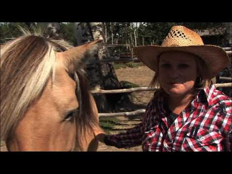 BBC WORLD TV's travel show Fast:Track - Learn to live like a cowboy in Canada