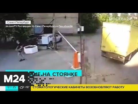 Актуальные новости России за 16 июня: в Петербурге мужчина избил несколько автомобилей - Москва 24