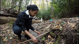 Carolina Students Build Research Skills in the N.C. Mountains