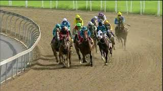 Vidéo de la course PMU PRIX TRACK AND BALL GAMING MR 87 HANDICAP