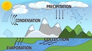 Water Cycle For Children with Song, Ciclo del Agua en Inglés para Niños con Canción