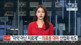 마약 아닌 치료제 CBD'' 연합뉴스 2021년 6월 …