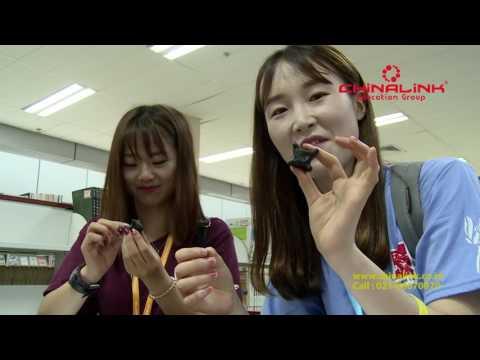 Beijing International Student Sumer Camp (BISSC) 2017
