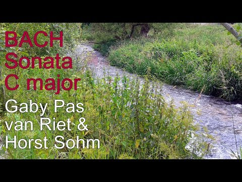 J.S. Bach - Sonata in C / BWV 1033 (best version) flute guitar duo