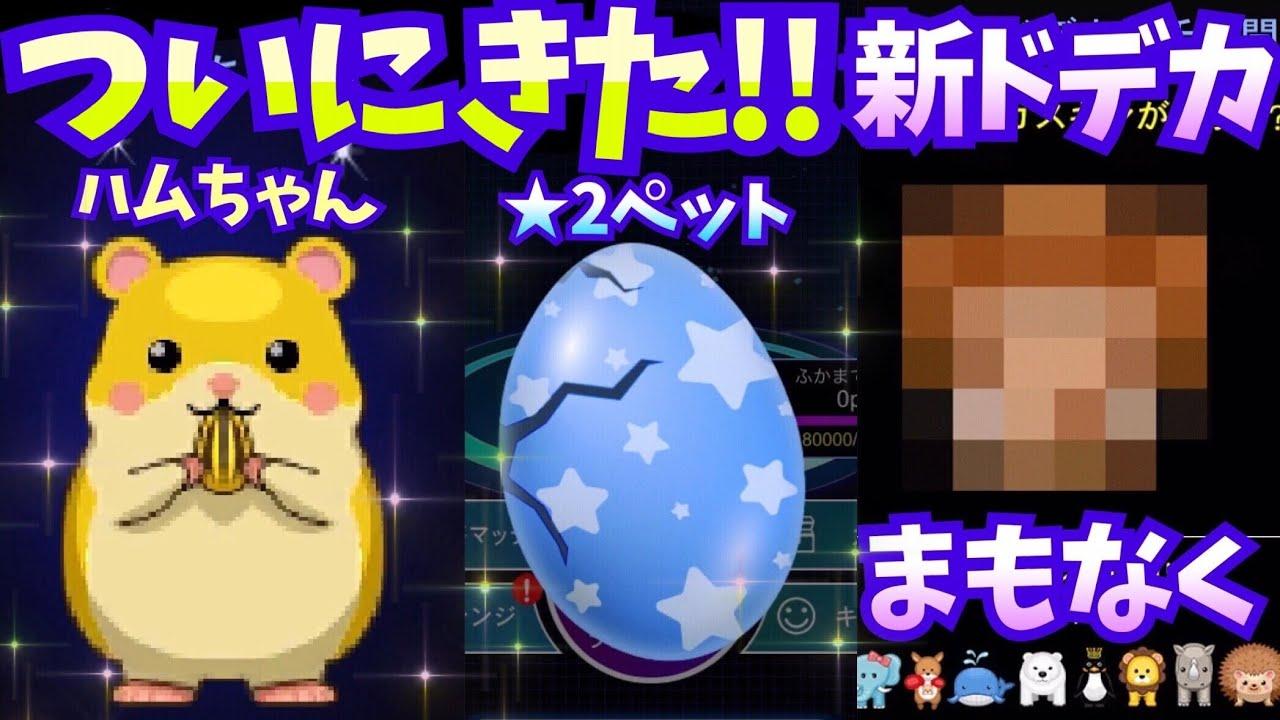 【青鬼オンライン】ついにきた!!ゴールデンハムちゃんと★2ペット!!新ドデカガチャも来る!!正体は?!