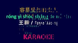 Người tình mùa đông, nhạc hoa, song ngữ karaoke, 容易受伤的女人