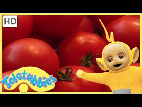 Teletubbies English Episodes Handy Hands Full Episode Hd