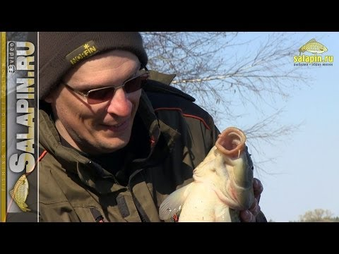 весенняя лучшая прикормка для ловли пресноводной рыбы