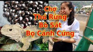 Khám Phá Chợ Samnua | Tết Té Nước Bunpimay Lào P1 | [Dã Thực]