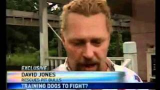 Local 15 Exclusive: Training Dogs To Fight?