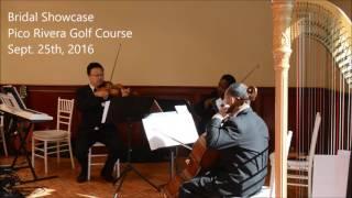 Classical Wedding Song (Pride & Prejudice Theme) Ocdamia Music Group