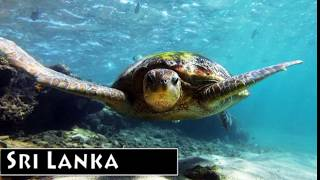 10 Most Beautiful Places in Sri Lanka to travel - Video 01