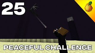 Peaceful Challenge #25: Defeating The Ender Dragon In Peaceful