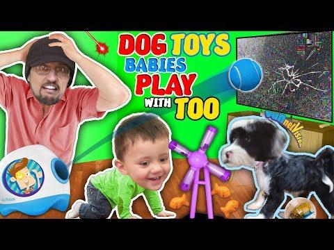 DOG TOYS that Break your TV!(FUNnel Vision Vlog)