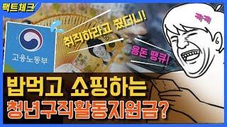"""""""밥먹고 쇼핑하는 청년구직활동지원금?"""" KTV 사실은 …"""