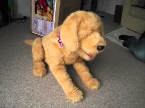 Biscuit The Robot Dog For Sale