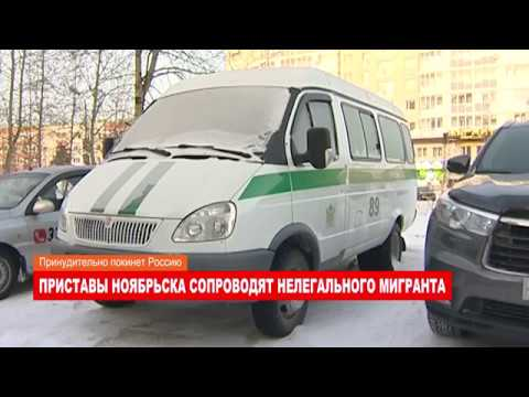 Ноябрьск. Происшествия от 19.02.2018 с Еленой Воротягиной