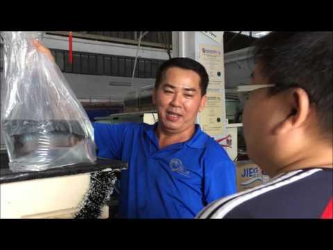 LIOW VIDEO: Collecting my Arowana fish 买龙鱼