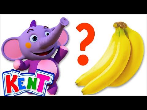 Baby Elephant Kent Finds The Missing BANANA   Learn Colors, Fruits And Animals For Children