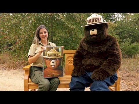 Smokey Bear's Story