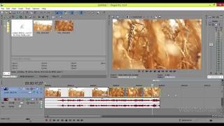 Монтаж и сохранение видео в Sony Vegas