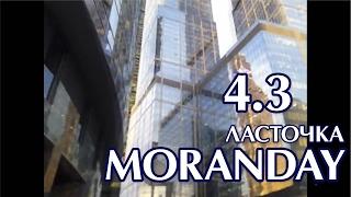 Moran Day 4.3 - Ласточка.
